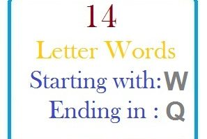 Fourteen letter words starting with W and ending in Q