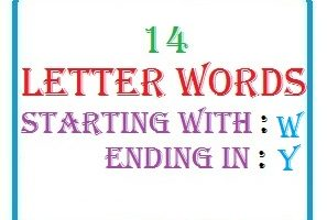 Fourteen letter words starting with W and ending in Y