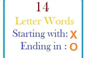 Fourteen letter words starting with X and ending in O