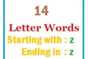 Fourteen letter words starting with Z and ending in Z